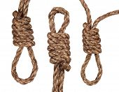 foto of hangmans noose  - nooses isolated on a white background - JPG