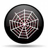 image of spider web  - spider web red glossy web icon  - JPG