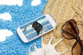 stock photo of schnauzer  - Straw hat and a seashell are lying on a little blue stones - JPG