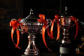 stock photo of prize winner  - trophy prize for the winner of a championship event - JPG