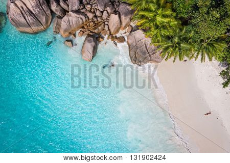 Tropical beach with sea and palm taken from drone. Beach drone photo. Beach and sea photo. Beach and