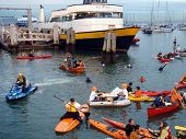 Mccovey Cove Filled With People On Rafts And Kayaks In Front Of Ferry