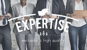 Постер, плакат: Expertise Ability Excellence Insight Perfection Concept