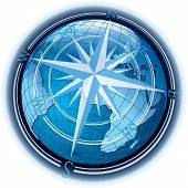 Rose Globe
