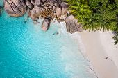 Постер, плакат: Tropical beach with sea and palm taken from drone Beach drone photo Beach and sea photo Beach and