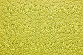 Green color leatherette texture