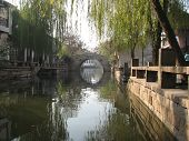 Suzhou Canal With Tree