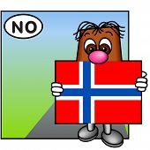 'Brownie' Showing The Flag Of Norway