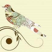 silueta vector del pájaro