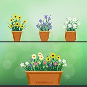 Flowerpot With Flowers Plant And Grass On Green Blur Bokeh Background. Nature Spring Or Summer Abstr poster