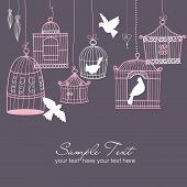 picture of caged  - Vintage bird cages - JPG