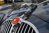 Jaguar-Emblem