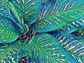 Tropical Foliage Plant In Sunny Garden. Summer Foliage Comic Digital Illustration. Natural Leaf Orna poster