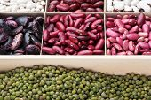 Different Types Of Legumes. In Wooden Box.varieties Of Beans.small Red Bean,scarlett Runner Bean Pha poster