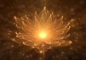 Radiant Orange Lotus With Rays Of Light, Water Lily, Enlightenment Or Meditation And Universe, Magic poster