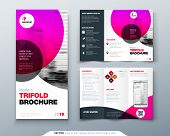 Tri Fold Brochure Design. Pink Business Template For Tri Fold Flyer. Layout With Modern Circle Photo poster