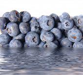 Blueberries In Water