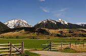 Primavera en Montana
