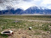 Ranch Land Of Idaho - Rocky Mountains