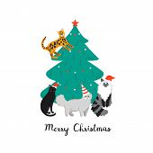 Design Template Card With Cute Domestic Cats. Merry Christmas Holiday Poster With Funny Animals. poster