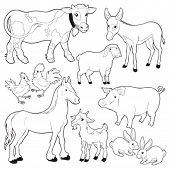 Farm animals. Vector and cartoon isolated black/white characters.