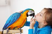 stock photo of parakeet  - Portrait of a kid girl with her domestic ara parrot - JPG