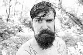 Treat Your Hair Today. Bearded Man With Wet Oily Hair On Natural Environment. Hairy Hipster Wearing  poster