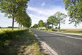 Sommer Straße