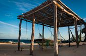 Hammocks On The Idyllic Beach On Cozumel Island Yucatan Mexico