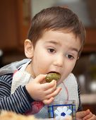 Little Boy Eats Pickles