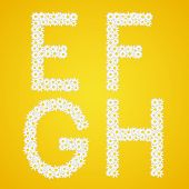 Letters Efgh Composed From Daisy Flowers. Complete Alphabet In The Gallery.