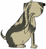 picture of bloodhound  - This illustration depicts a bloodhound dog with a striped coat - JPG
