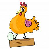 hen guarding eggs cartoon illustration.domestic bird