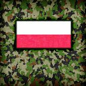 foto of ami  - Amy camouflage uniform with flag on it Poland - JPG