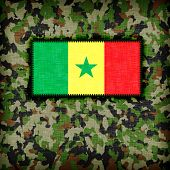 stock photo of ami  - Amy camouflage uniform with flag on it Senegal - JPG