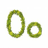 image of storybook  - Leafy storybook font depicting a letter O in upper and lower case - JPG