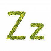 Leaf Font Z