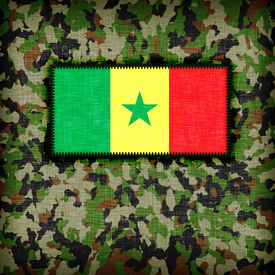 picture of ami  - Amy camouflage uniform with flag on it Senegal - JPG