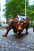 Charging Bull (bowling Green Bull) Sculpture In New York