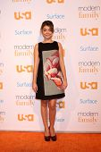 LOS ANGELES - OCT 28:  Sarah Hyland at the Modern Family on USA Network Fan Appreciation Event at Village Theater on October 28, 2013 in Westwood, CA