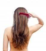 stock photo of rear-end  - Comb your hair delicately after washing hair - JPG