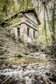 Creek In Forest With Old House