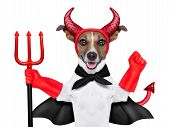 stock photo of funny ghost  - devil dog behind a blank white banner - JPG