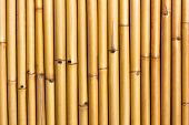 stock photo of bamboo  - Wall of bamboo  - JPG