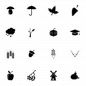 Vector black autumn icons set