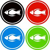 colorful fish icon