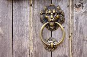 stock photo of metal sculpture  - Lion head Door knocker on old wooden door - JPG