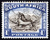 Postage Stamp South Africa 1950 Gnu, Antelope