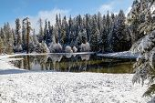 Winter Paradise I