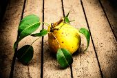 Fresh Yellow Pear With Green Leaves On Old Wooden Background Closeup. Williams Pears On  Rustic Wood
